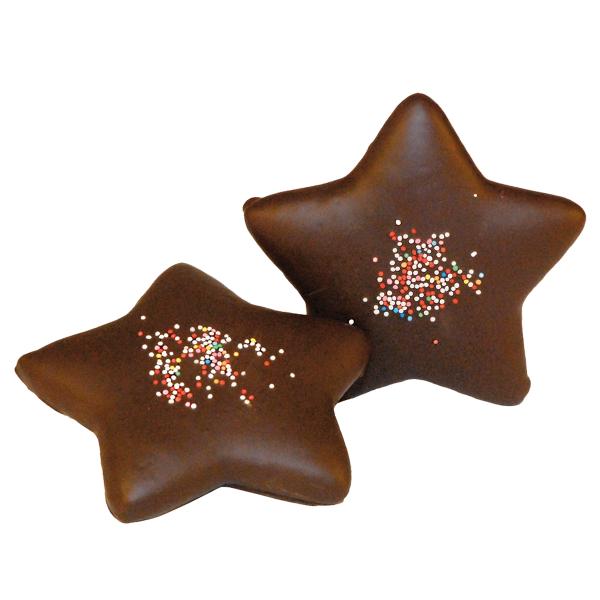 Lebkuchen Stern in Schokolade getunkt